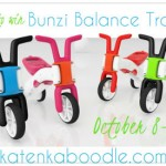 Bunzi Balance Trainer Blogger Opp