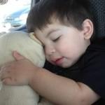 CuddleTunes Bear Giveway