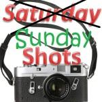 Saturday errr Sunday Shots