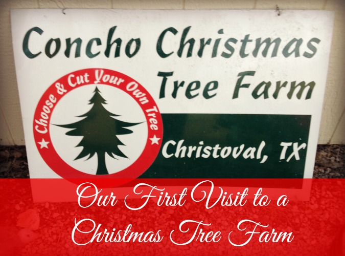Christmas Tree Farm Header