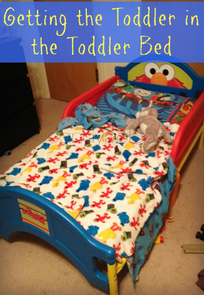 getting the toddler in the toddler bed header