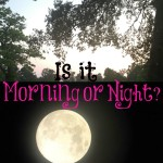 Is it Morning or Night? #SmoothBlogger #ad