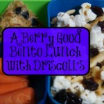 A Berry Good Bento Lunch with Driscoll's #Berries2School