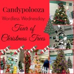 Wordless Wednesday: Tour of Christmas Trees