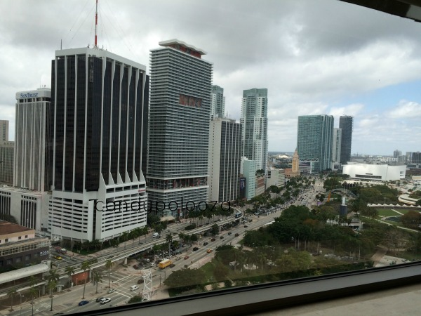 room view