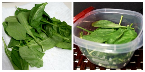 Preparing Spinach collage 2