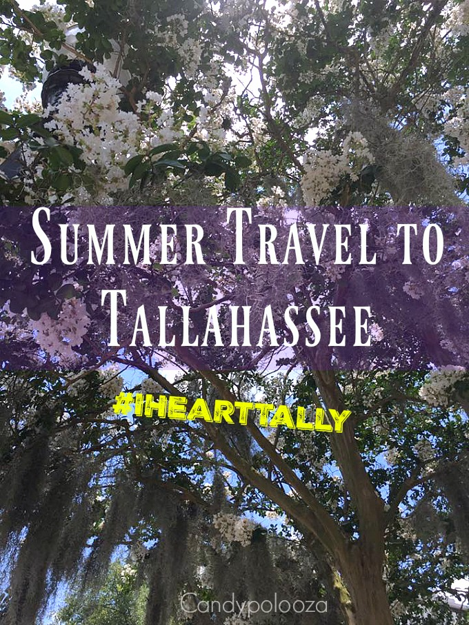 Summer Travel Tallahassee