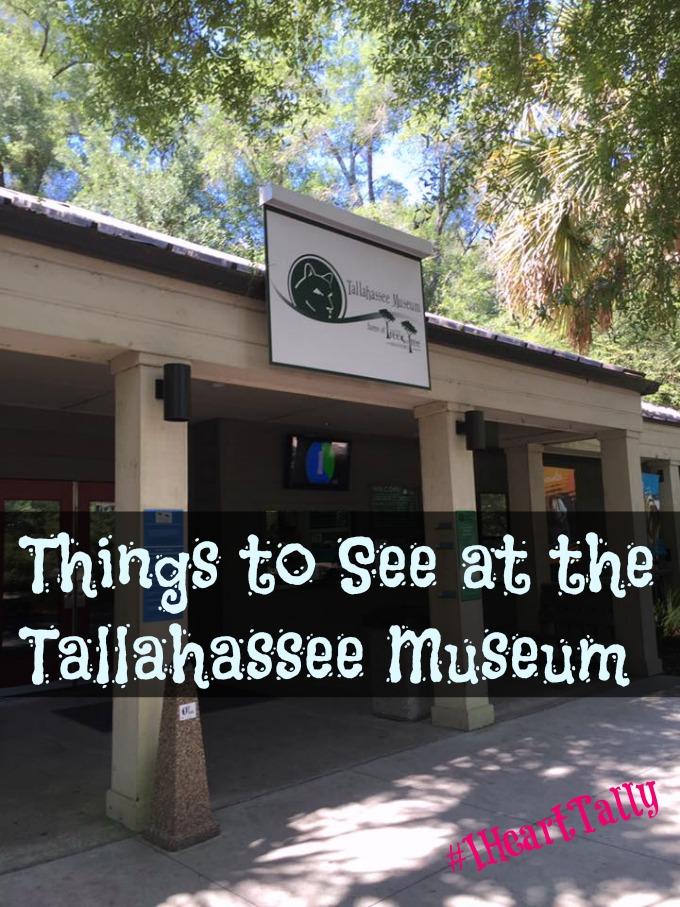 Tallahassee Museum 1