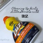 Cleaning Up Dirty Little Secrets with BIZ AD