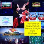 The Future of Disney Parks and Resorts Straight from D23Expo